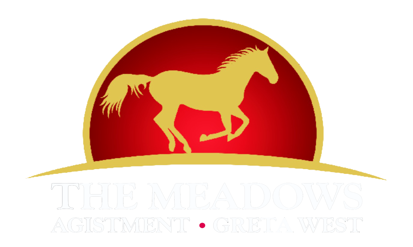 The Meadows Agistment